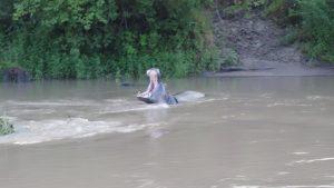 Hippo Katavi NP